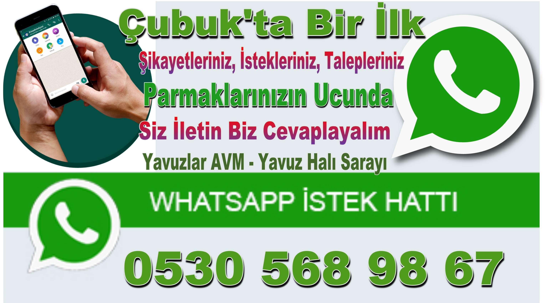 WhatsApp Şikayet ve İstek Hattı Açıldı