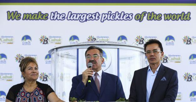Çubuk'ta dünyanın en büyük turşu kurma rekor denemesi yapıldı