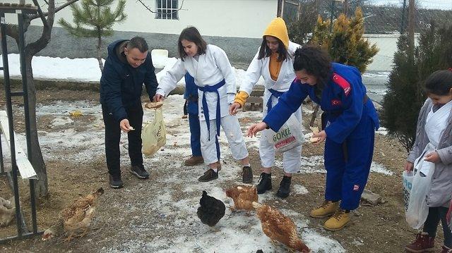 Çubuk'ta Öğrenciler Atıklarla Tavuk Besliyor