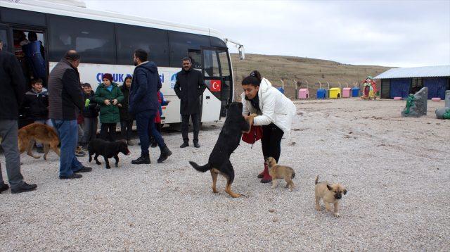 Öğrenciler hayvan barınağında köpekleri besledi