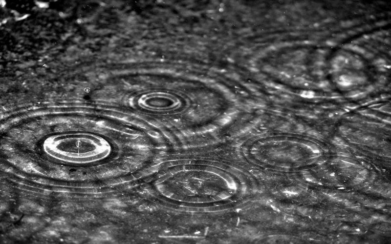 Çubukta yağmur sevinci