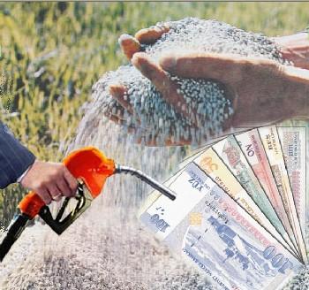 Çiftçilere DGD Ödemeleri Başladı