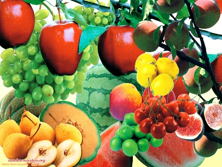 Yaz meyveleri şifa kaynağı