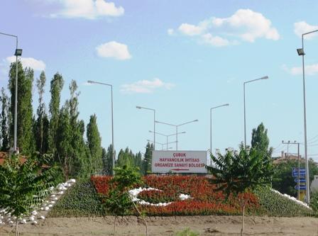 Çiçeklerden Türk Bayrağı