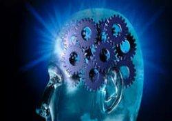 Beynimizin 10 şaşırtıcı gerçeği!!