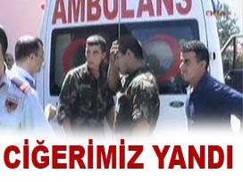 Terörün Türkiyeye tek faydası