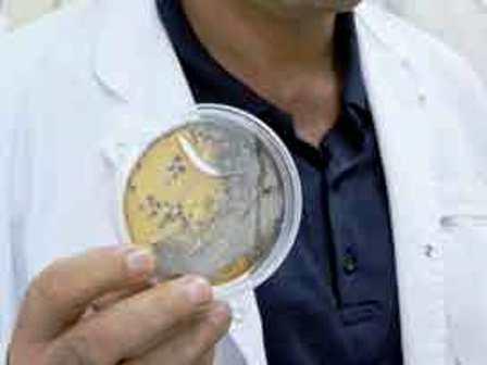 Bakterilere karşı yeni tür antibiyotik
