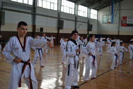 Taekwondocular İstanbul Yolcusu