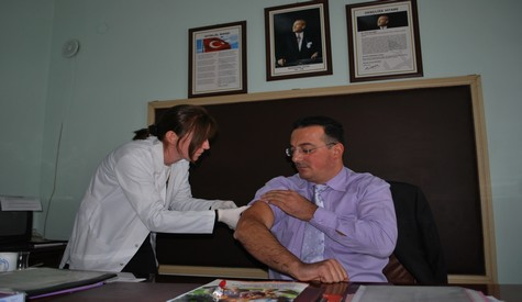 Çubukta Domuz Gribi Aşısı Yapılmaya Başlandı