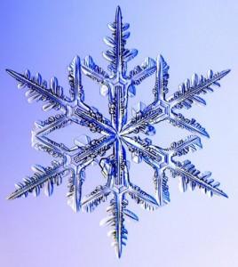 Kar tanelerinin 35 farklı formu görüntülendi