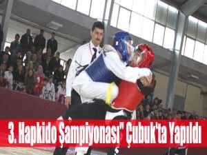 3. Hapkido Şampiyonası Çubukta Yapıldı