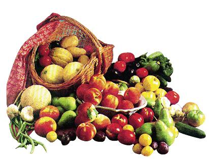 Organik Tarım ve Organik Hayvancılık Semineri