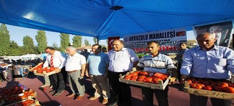 Ankara 'Akkuzulu Domates Şenliği'ne Akın Etti