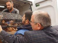 Çubuk'ta Üreticiye Tavuk, Hindi ve Ördek Dağıtıldı