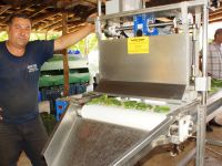 Kuvvet Teknikten Salatalık İğneleme Makinesi