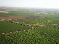Çubuk Ovası'nın Bir Kısmı Tarımsal Sit Alanı İlan Edildi