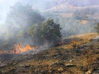 Çubuk'taki yangında ağaçlık alan zarar gördü