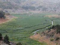 Çubuk-1 Barajı ömrünü doldurdu