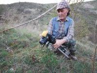 Çubuk'ta endemik şakayık çiçeğine rastlandı