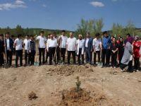 Çubuk'ta Öğrenciler Hatıra Ormanı Oluşturdu
