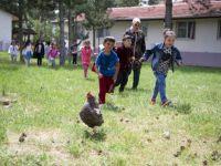 Öğrencileri, Toprak Ve Hayvan İle Buluşturan Okul