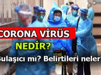 Havalanının Dibindeki Çubuk Corona Virüsü Tehdidi Altında Mı?