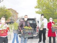 Şehit mezarları Anneler Günü için çiçeklendirildi