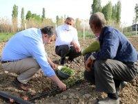 Çubuk Belediye Başkanı Demirbaş'tan çiftçilere ziyaret