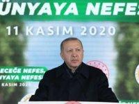 AYBÜ Merkez Kampüsüne Fidanlardan Türkiye Haritası Oluşturuldu