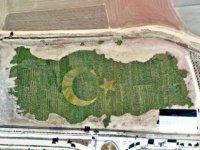 Rekorlar arasına giren bitkili Türkiye haritası uçaklardan da görülebilecek