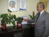 Çubuk Belediyesi ve Tav İşbirliği ile ağaçlandırma yapılacak