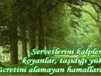 Zekat ve Hazin bir Salebe hatırası!..