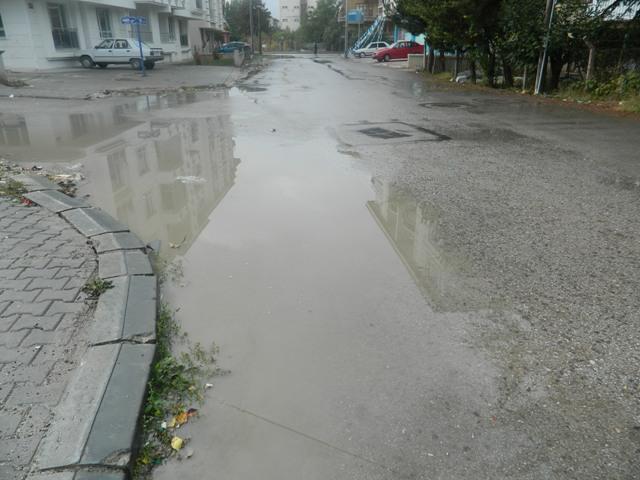 asfalt37.jpg