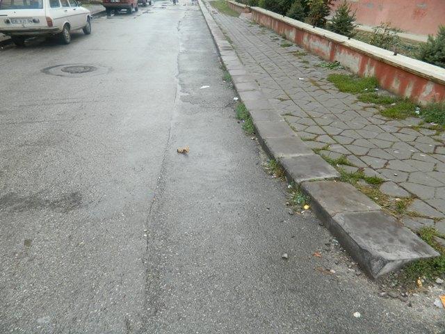 asfalt46.jpg