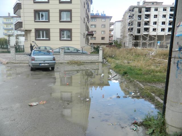 asfalt59.jpg