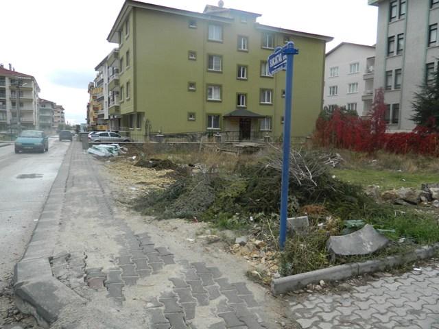 asfalt64.jpg