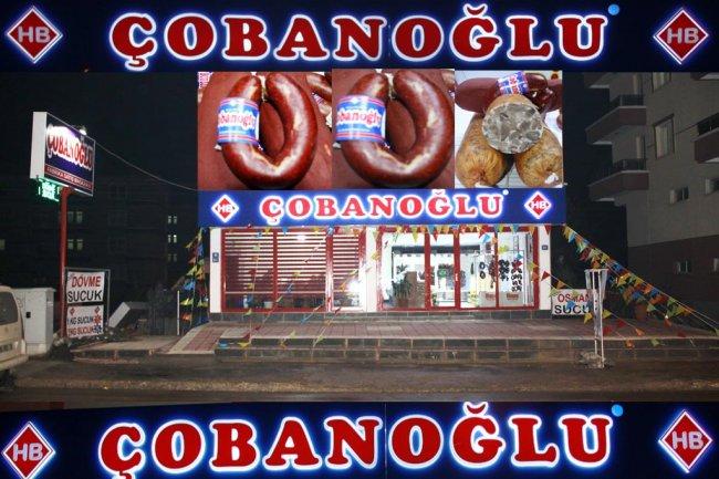 cobanoglu05.jpg