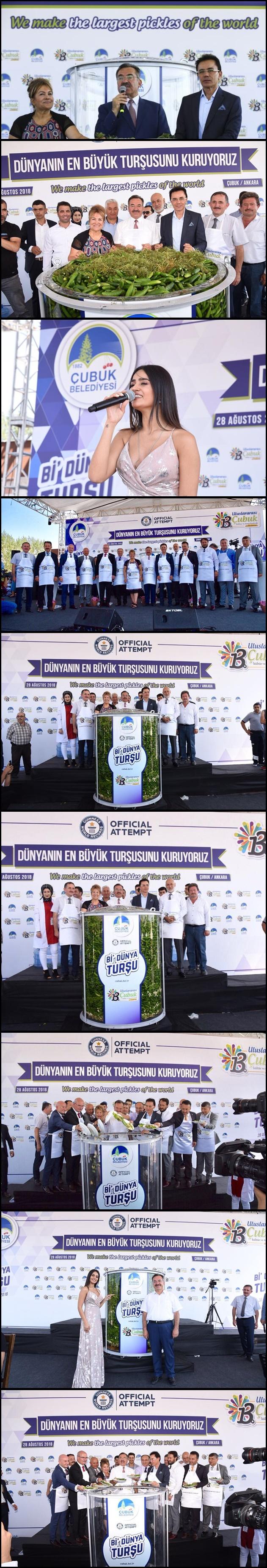 dunyanin_en_buyuk_tursu_kurma_rekor_denemesi_h236820-vert.jpg