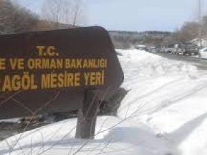 Çubuk Karagöl Grup Yolu 2017 Kar Manzarası