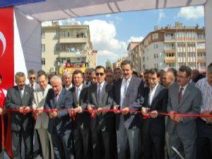NTV ÇUBUK TURŞU FESTİVALİ 2013